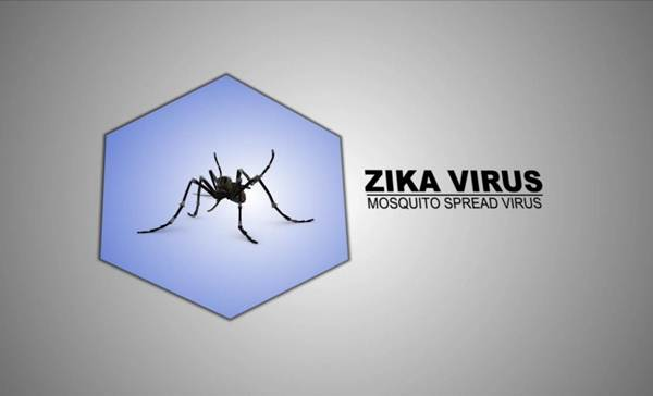 Zika virus causes microcephaly in mice